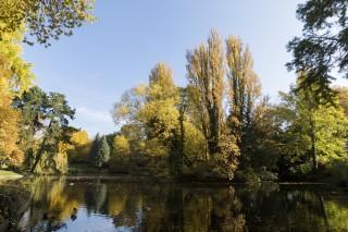 parc-bertin-douai-nature-douaisis-nord-france-c-ad-langlet-5-387