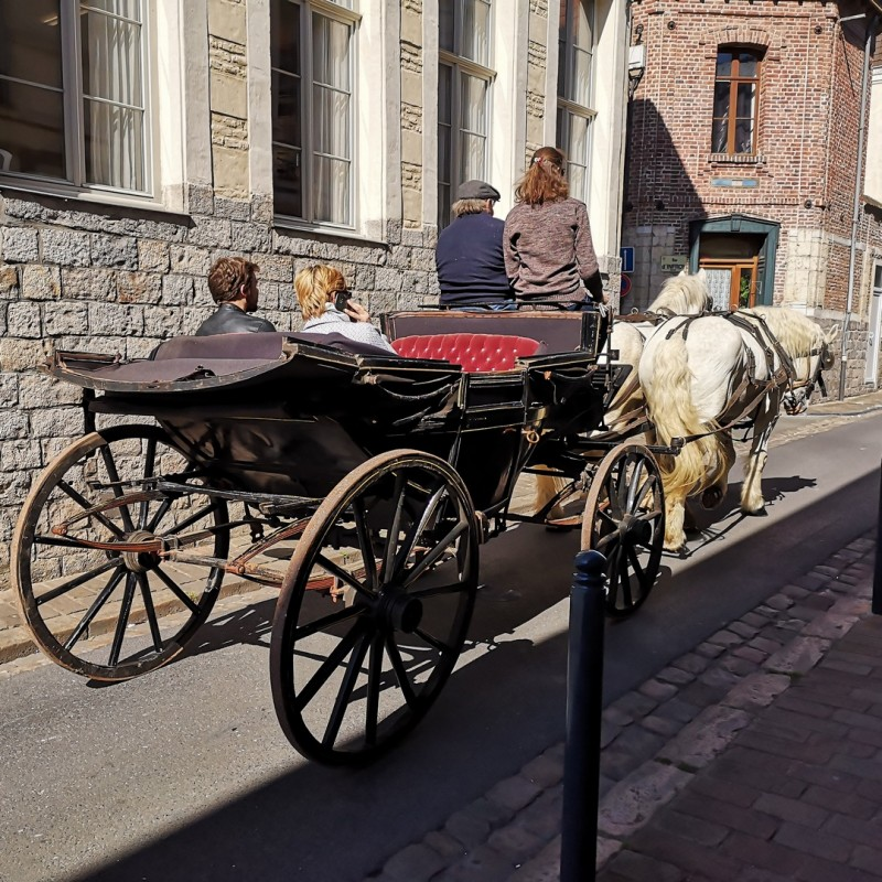 balade-caleche-cheval-chevaux-douai-douaisis-nord-france-5-377